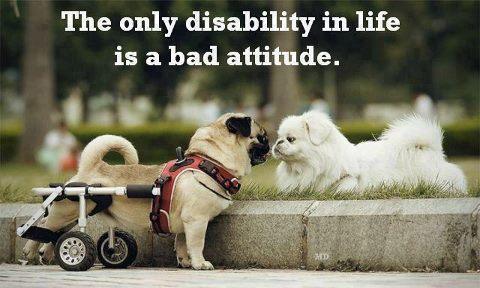 El único limite es nuestra actitud.