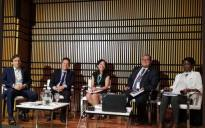 Panel: Global and Local Implementation of the 2030 Agenda.